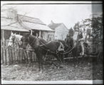 Working wagon and mule team