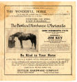 Marvel of the 20th Century! Jim Key- the Wonder of the Age in Animal Education