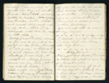 Nannie Haskins diary entry, 1864 June 12