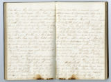 Rachel Carter Craighead diary entry dealing with Battle of Pittsburg Landing