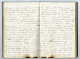 Rachel Carter Craighead diary entry continues to record news of  Battle of Shiloh