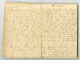 Rachel Carter Craighead diary entry relating the agony of her brother's death