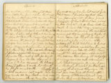 Rachel Carter Craighead diary entry with news of Fannie Battle