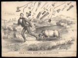 Polk vs. Wool or the Harry-Cane, 1844