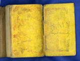 Richard Moore Young's Bible
