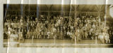 Panorama photograph of Confederate veterans' reunion